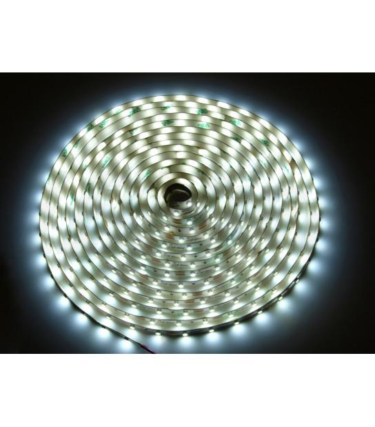 Bande 300 LED SMD 3528 de 5 mètres 12V Blanc froid 6000K Diffusion 120° Etanche IP68 LED Line - 240188 - RUBANS / BANDEAUX LED - siageo-led.com
