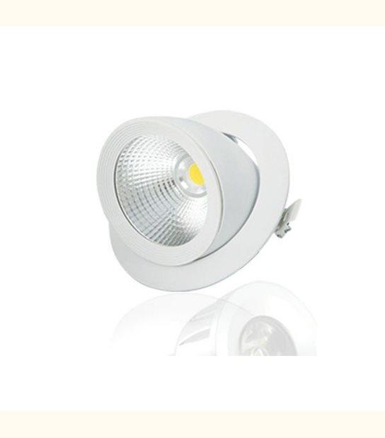 Spot LED COB Escargot 10W - Couleur - Blanc chaud 3000°K - OLD-LEDFLASH - siageo-led.com
